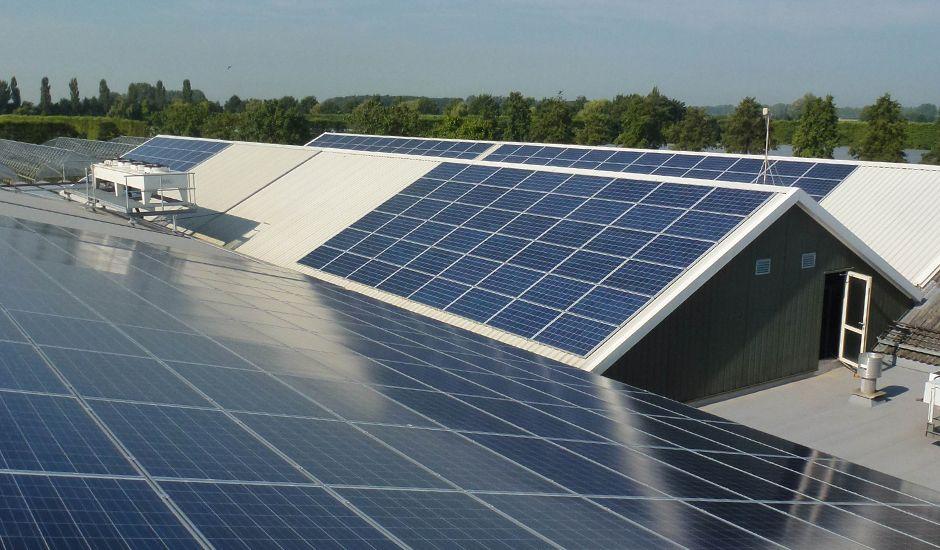SolarComfort - Bloedbessen