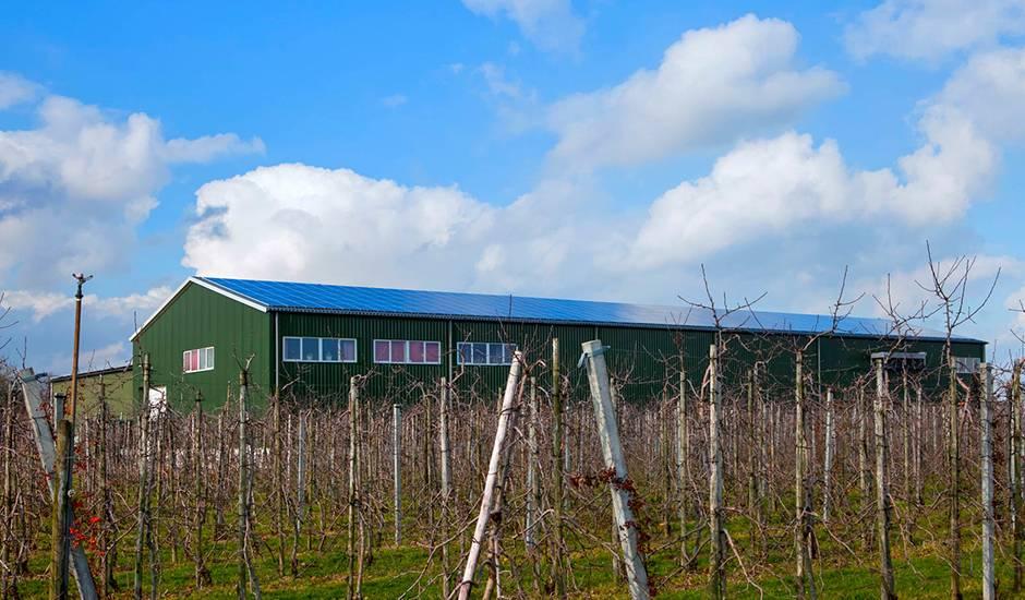 SolarComfort - Fruitbedrijf Van Kranenburg