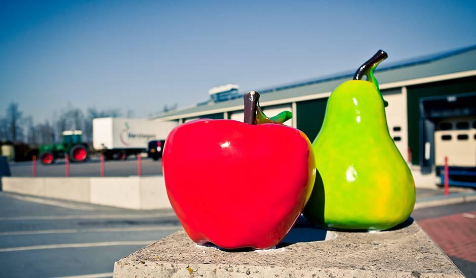 SolarComfort - Fruitbedrijf Verstegen